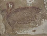 cave painting.png