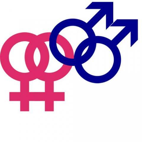 homo sexuality