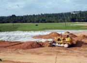paddy field reclamation