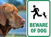 beware-of-dog